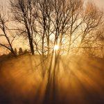 Sunset Luddington